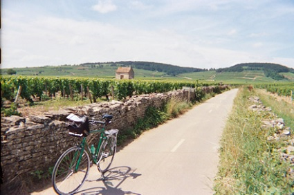 Discover the scenic trails and vineyards of Burgundy on your bicycle